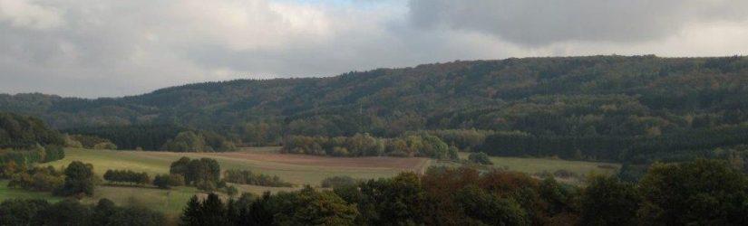Der Wenzelstein